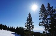 Sunčani dani na Kopaoniku