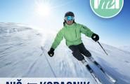 Maestro travel ski opening